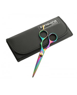 Titanium Hair Scissors, Hairdressing Scissors, Rainbow Scissors and Presentation Case