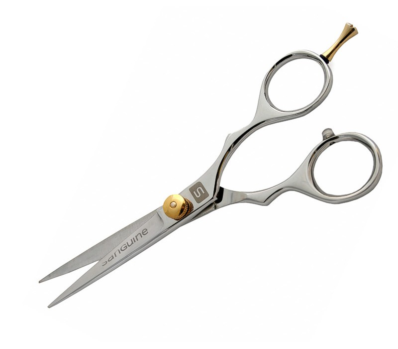 Professional Hair Scissors Silver Multiple Sizes with Golden Tension Screw and Ringer Rest